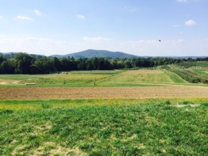 The ground over at Fishkill Farms in Hopewell Jct., NY