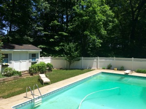Photo of Valerie Blafer's pool mid August