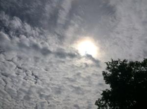 Sun beats down on Poughkeepsie residents.
