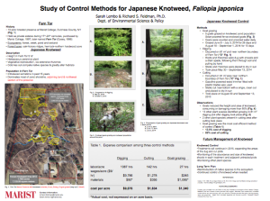 An outline of the different methods for control of Japanese knotweed. A full-sized version of this poster is displayed near Dyson 235.